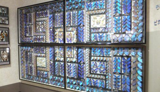 名和昆虫博物館(岐阜公園内)を訪問する。