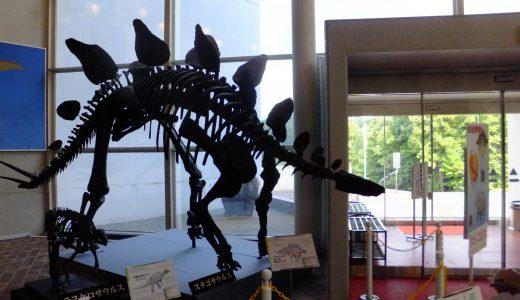 岐阜県博物館に行く。